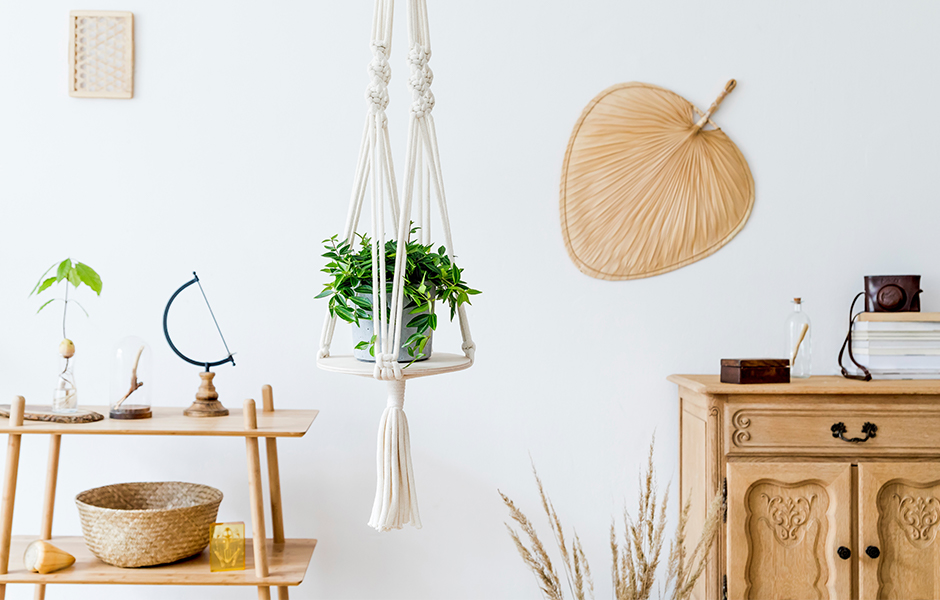 Macrame Plant Hanger With Small Plant