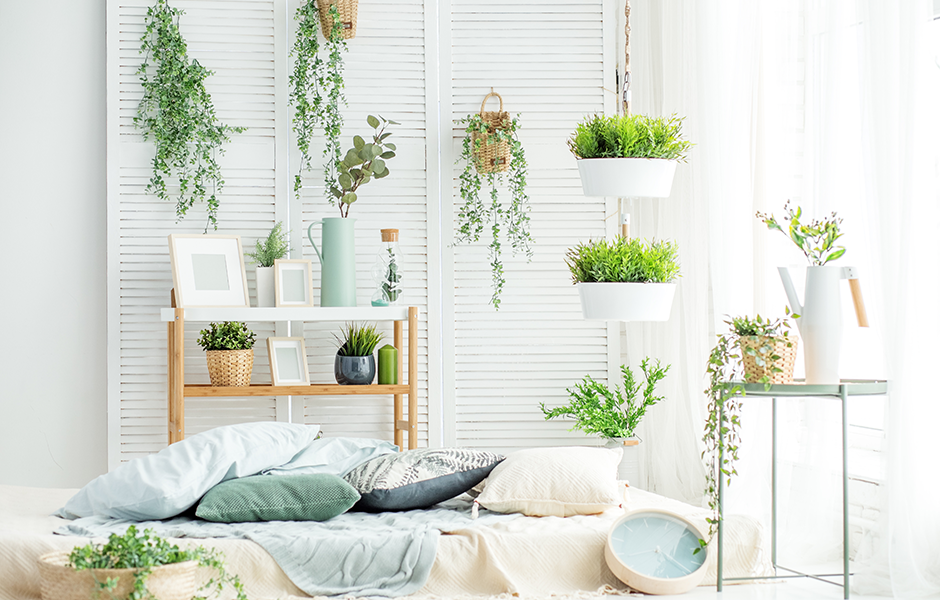 Green interior design concept with plants